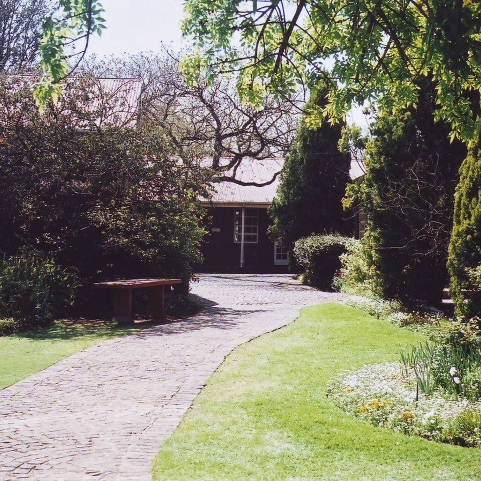 A path to the junior school